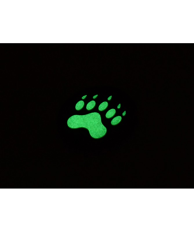 Impronta Orso - GITD